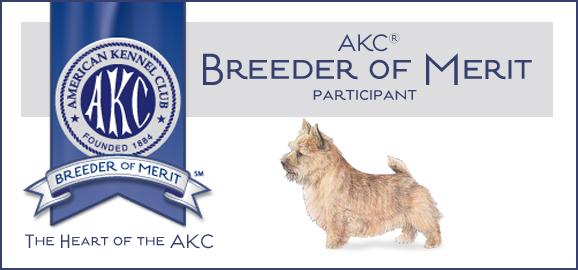 AKC Breader of Merit